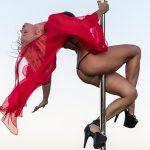 絵になるポールダンサー「Anastasia Sokolova」の華麗なポールダンス