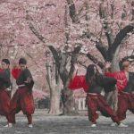 TRIQSTAR の踊ってみたがハイレベルすぎ!千本桜